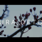 Buds on a tree and Sura Detox title