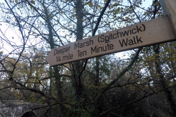 Wooden path sign